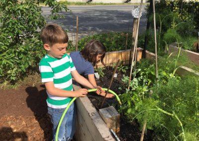 92 - Gardening